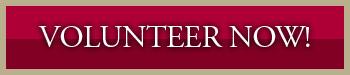 volunteer-info1