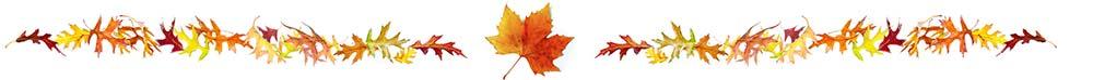 fall-leaves-web