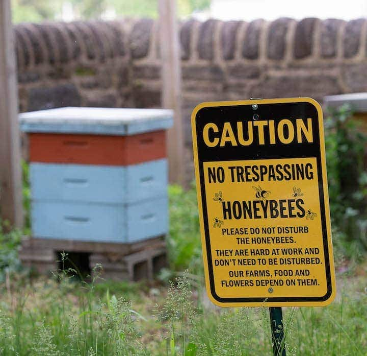 photo of bee hive and caution sign